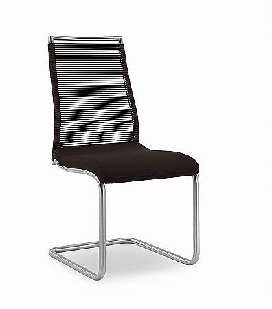 0341 Elli Dining Chair