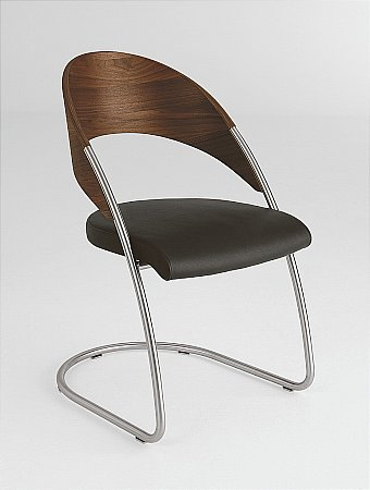 X253 Dining Chair