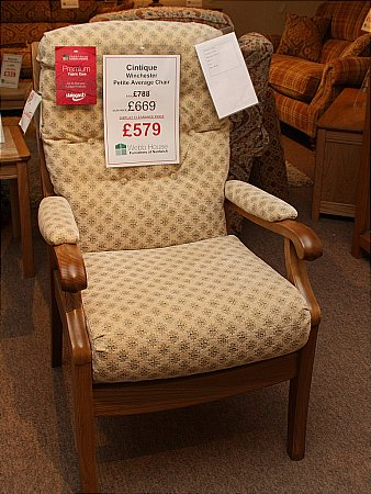 Winchester Petite Average Chair