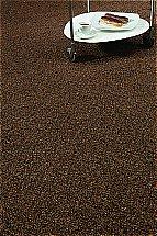 Abingdon Flooring - Stainfree Berber