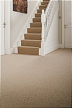 Ryalux - Simply Loops Carpet