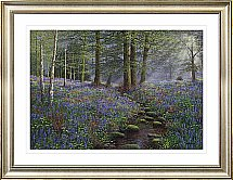 Artko - Stream Through Bluebell Wood  Framed