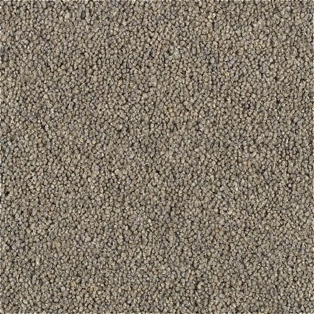 Penthouse Carpets - Shoreline Carpet