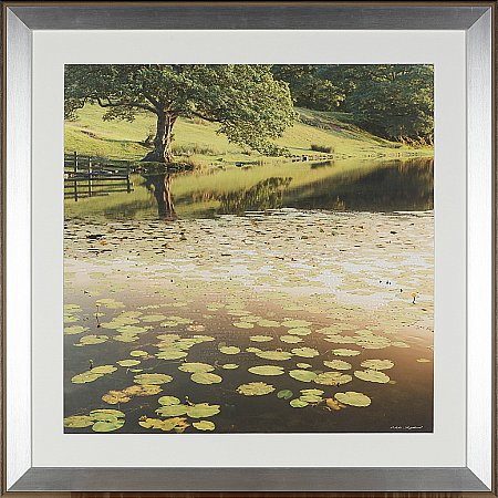 13931/Artko/Tranquil-Summer-Lake-II-Framed