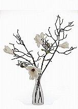 Neptune Kew Magnolia Bouquet With Vase