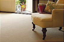 Ulster Carpets Ulster Velvet Carpet - Mullion