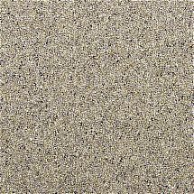 2647/Penthouse-Carpets/Crofter-Carpet-Tweed