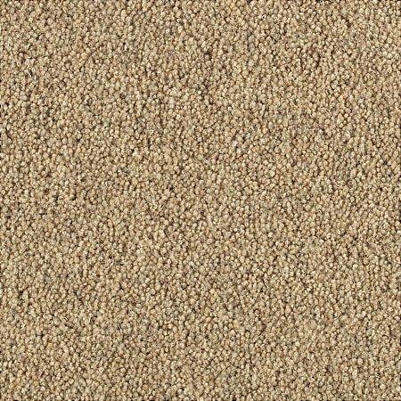 Penthouse Carpets - Springtime Carpet