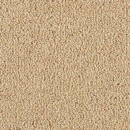 Penthouse Carpets - Vermont Carpet