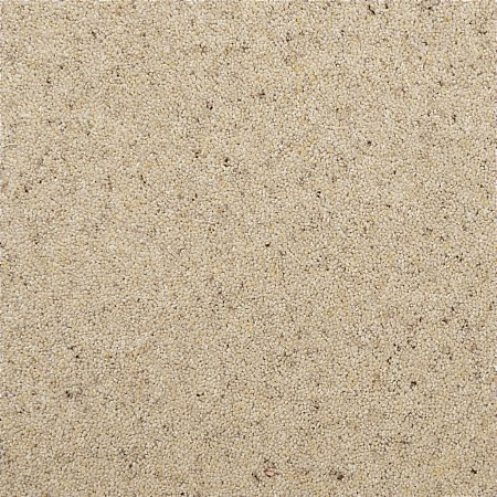 Penthouse Carpets - Crofter Carpet Country Cream